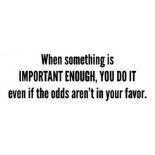 When something is important enough, you do it even if the odds aren't in your favor. wall quotes vinyl lettering wall decal home decor office motivation