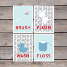 brush, floss, flush, wash