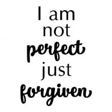 I am not perfect just forgiven wall quotes vinyl lettering wall decal home decor vinyl stencil religious faith christian church pray bible