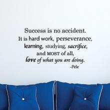 Success is no accident, it is hard work, perseverance, learning, studying, sacrifice, and most of all. love of what you are doing  -Pele