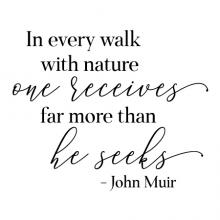 In every walk with nature one receives far more than he seeks -John Muir wall quotes vinyl lettering wall decal home decor travel hike outdoors woods vacation lake cabin beach