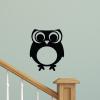 Cute owl with big Eyes