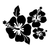 three hibiscus flowers