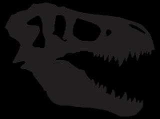 T Rex Skull Dinosaur Fossil Wall Quotes Wall Art Decal