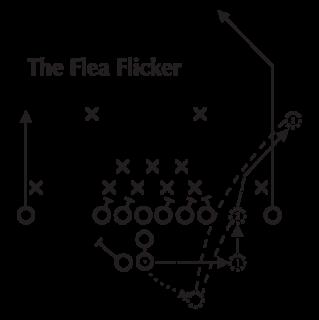 Flea Flicker Diagram Wall Quotes™ Decal | WallQuotes.com