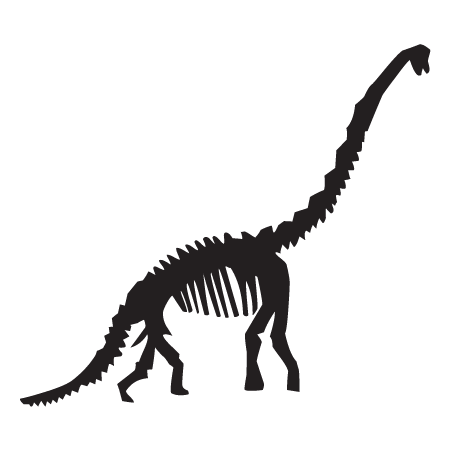 Diplodocus Dinosaur Fossil Wall Quotes Wall Art Decal