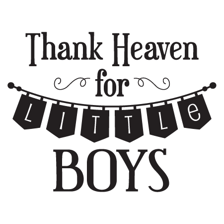 Thank Heaven For Little Boys Banner Wall Quotes Decal